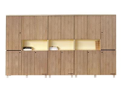 板式组合文件柜 资料柜 收藏储物柜 书柜 组合档案柜