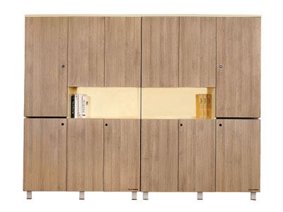 办公家具 办公柜 文件柜 组合文件柜 资料柜 档案柜 展示柜